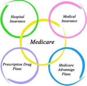 medicare supplement agent